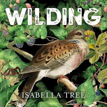 Hard Back, Wilding Book by Isabella Tree