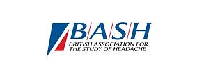 BASH 2019c.png