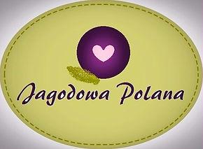 agroturystyka Jagodowa Polana logo
