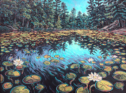 Lost Channel Waterlilies