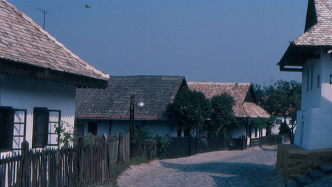 KERALA VILLAGE IN HUNGARY