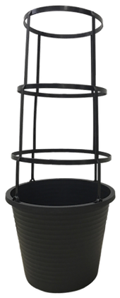 """11"""" Sloan Flare In Tomato Cage 2.5-Gal"""