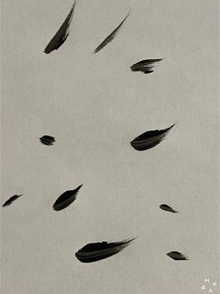 Silencio (2020)