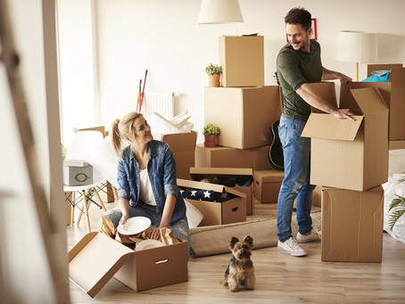 Expert Movers in Philadelphia Offer These Tips for Moving with Pets