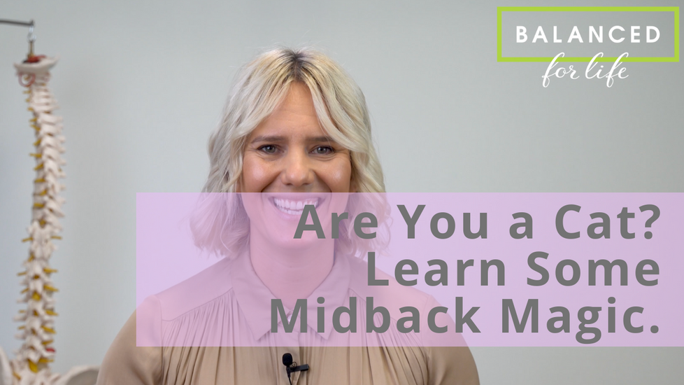 Are You a Cat? Learn Some Midback Magic