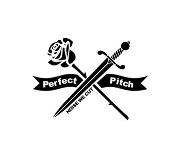 PerfectPitchAgency.png