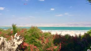 Israël - Sur les rives de la mer Morte