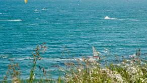 Île de Vancouver - entre surf et afternoon tea