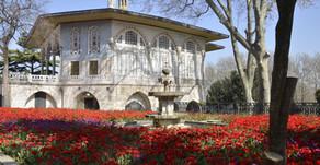 Turquie - Au temps des tulipes à Istanbul