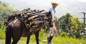 Honduras - Un petit pays, trois mondes