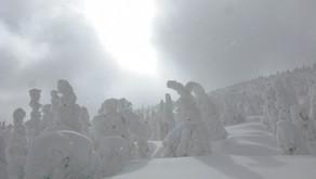 Parc national de la Gaspésie -Du zen à  l' extrême dans les monts McGerrigle