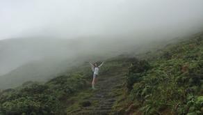 Martinique - À travers les mornes et les cascades