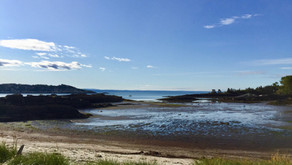 L'esprit du fleuve Saint Laurent