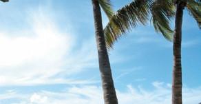États-Unis - Key West, prélude à la Caraïbe