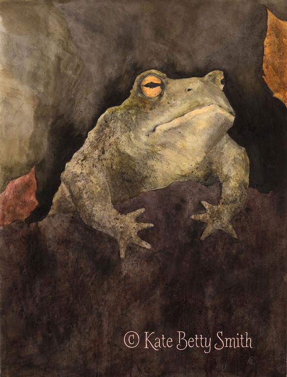 The Berkeley Toad