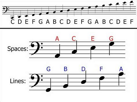 Bass clef .png