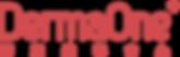 DermaOne Logo full version.png