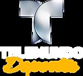 pngkit_telemundo-logo-png_1907794.png