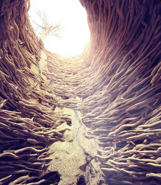 rabbit and chess in deep hole toward the sunlight. creative concept_edited.jpg