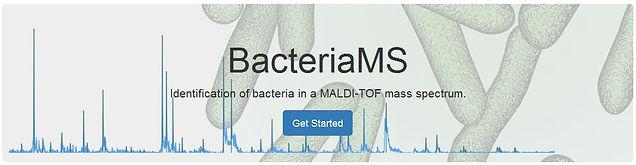 BacteriaMS-Logo.jpg