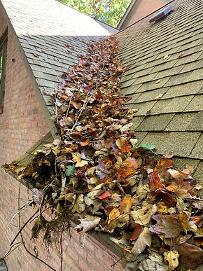 Clogged gutters that need a profesional gutter cleaning company to clean them.