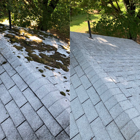 North Carolina roof cleaning business