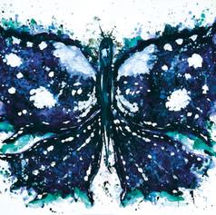 Butterfly or Inkblot?