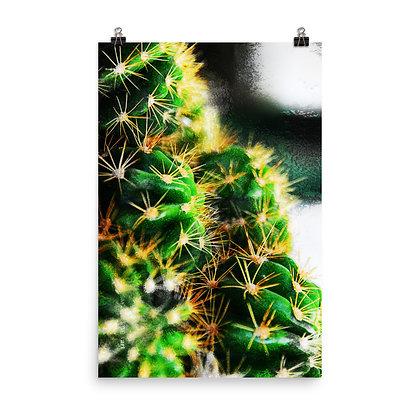 Prickly Print