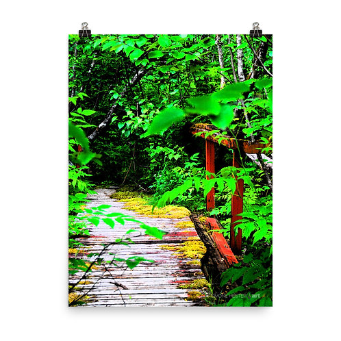 Walk This Way Print