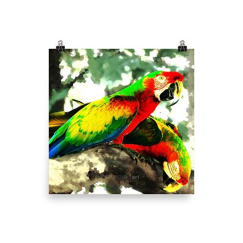 Deux Perroquets Print