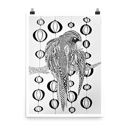 Magical Macaw Print