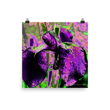 Iris In Neon Print