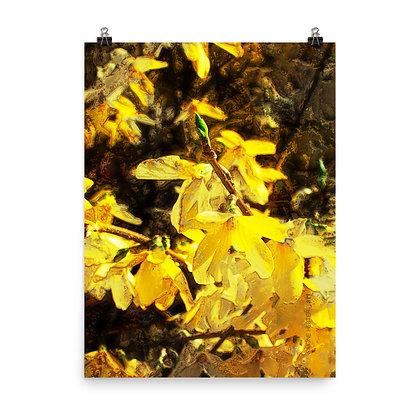 Mellow Yellow Print