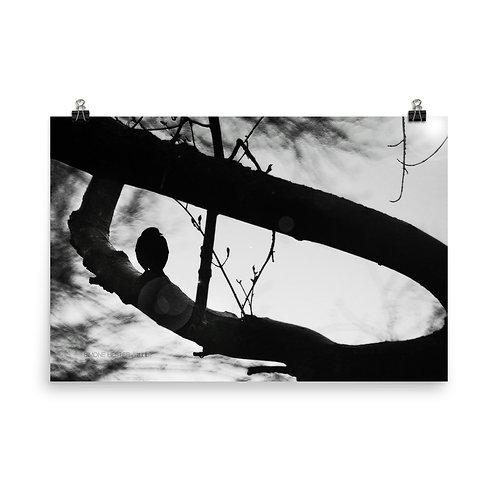 Lurking Silhouette Print