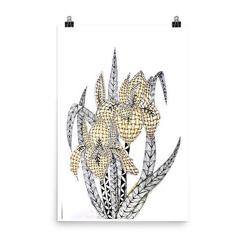 Golden Iris Print