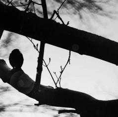 Lurking Silhouette
