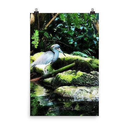 Blurred Marsh Print