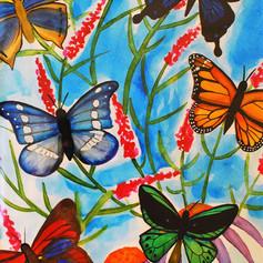 Butterfly Bunch