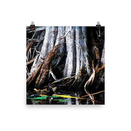 Mangled Mangrove Print