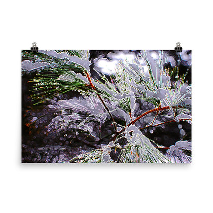 Abstract Winter Print
