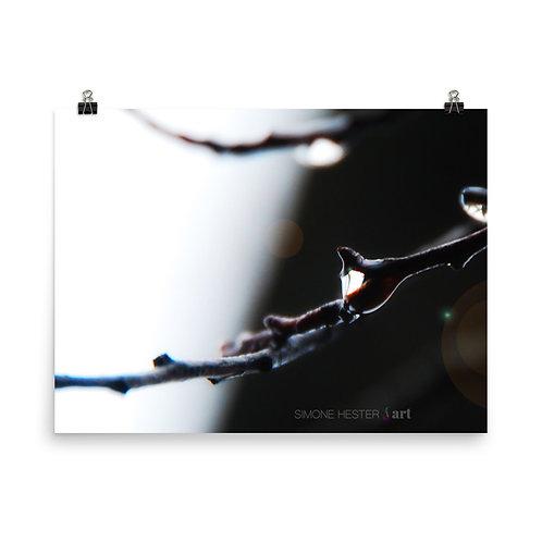 Twig Print