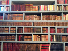 Concrete bookshelves with old books