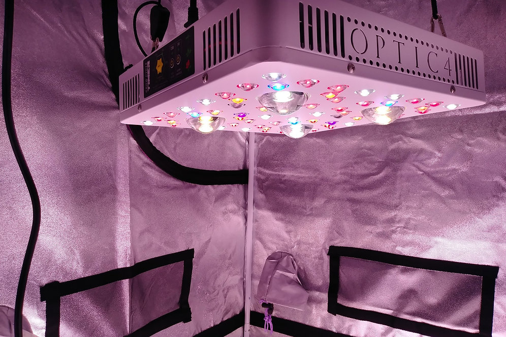 OPTIC 4 COB LED Grow Light 415W (UV/IR) 3000k & 5000k COBs | Skunk Grow  Supply
