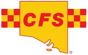 CFS.png