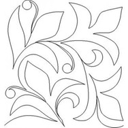 new vine
