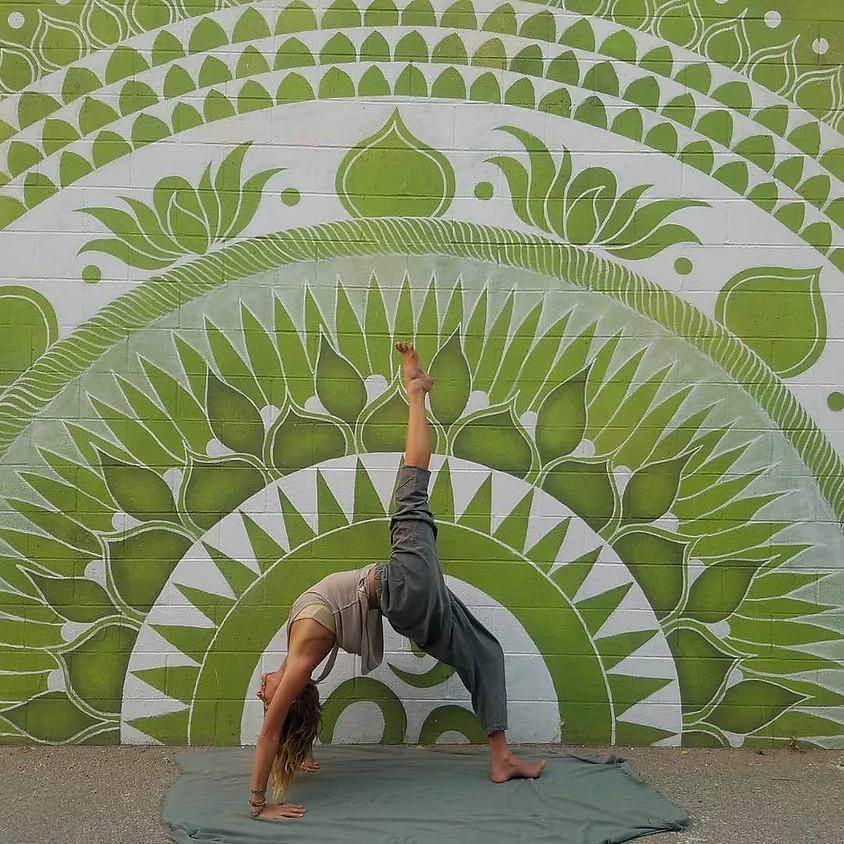 Prana Vinyasa Yoga Teacher Training w/Kelley Doyle