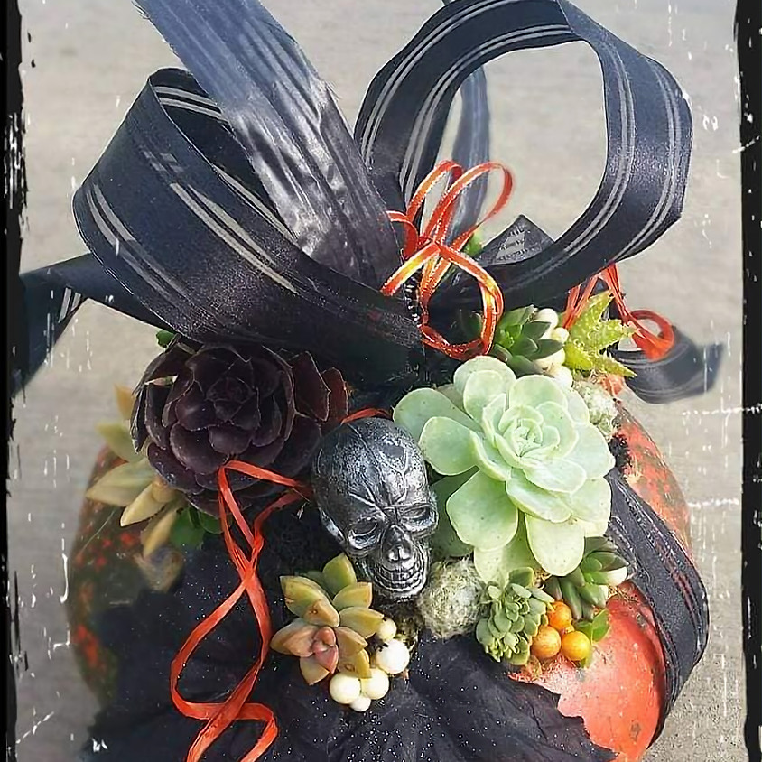Succulent Topped Pumpkin Workshop/Brunch