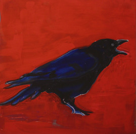 Coal Covered Crow