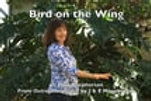 Bird On The Wing lyrics video