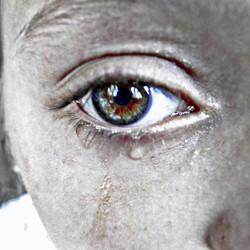 Earthy Eyes